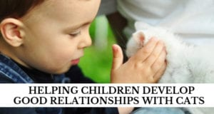 helping children develop good relationships with cats