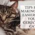 tips for making life easier for your geriatric cat