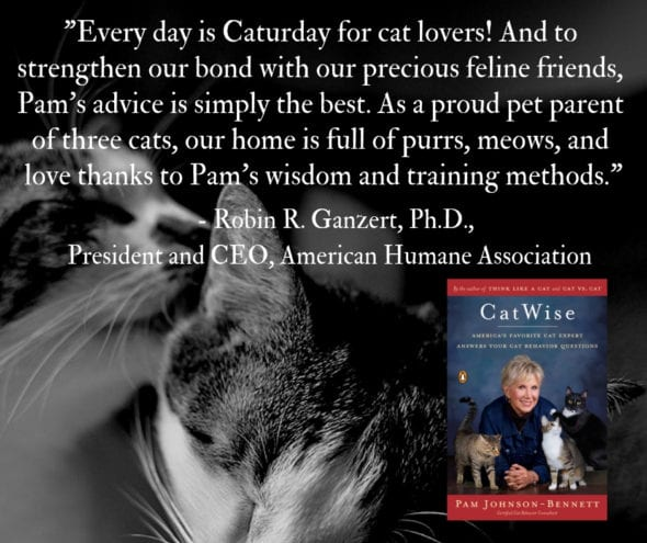 quote about CatWise from American Humane