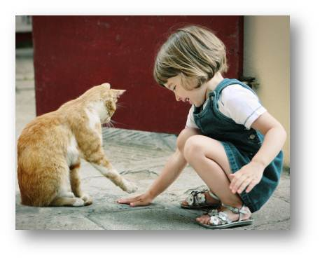little girl and her cat