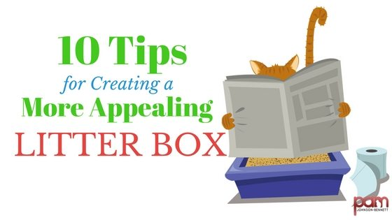 10 tips for creating a more appealing litter box