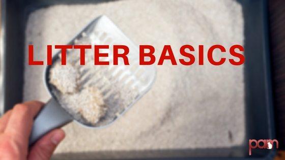 litter-basics