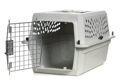Best Cat Carrier For Pet Exam