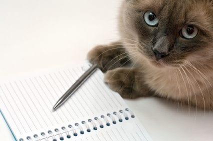 how to become an animal behaviorist