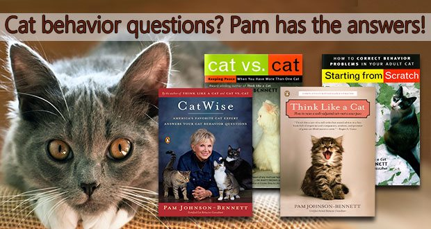 Cat behavior questions? Pam has the answers!