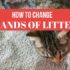 how to change brands of litter