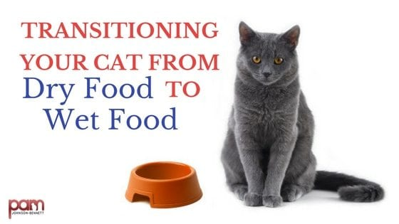 Cat Food How To Switch Your Cat From Dry To Wet Cat Food