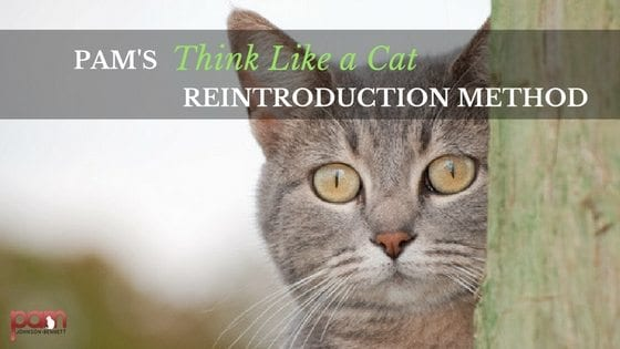 pam's think like a cat reintroduction method