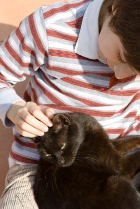 Boy brushing a black cat