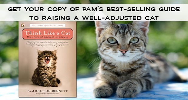 Think Like a Cat: get your copy of Pam's best-selling guide to raising a well-adjusted cat