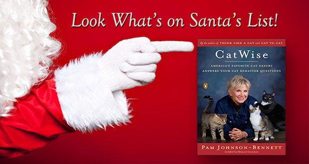 Look what's on Santa's list!