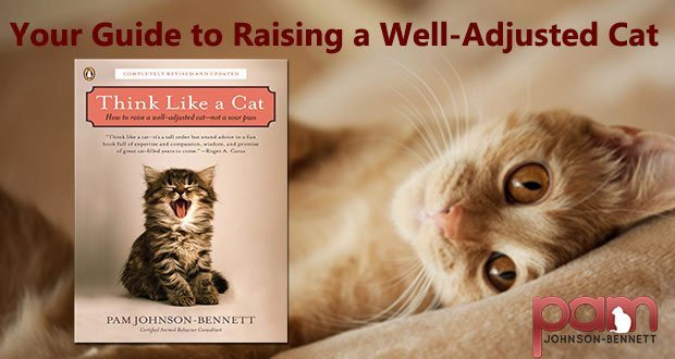 Think Like a Cat: Your guide to raising a well-adjusted cat