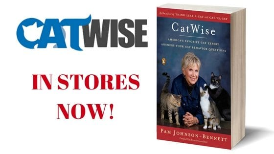 CatWise in stores now