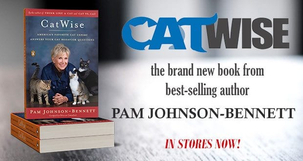 CatWise: the brand new book from best-selling author Pam Johnson-Bennett