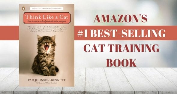 amazon's best-selling cat training book